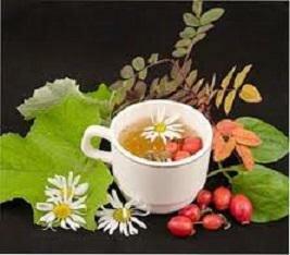 Травы при панкреатите – народные рецепты