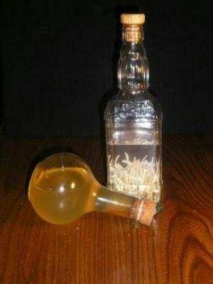 настойка чеснока на водке