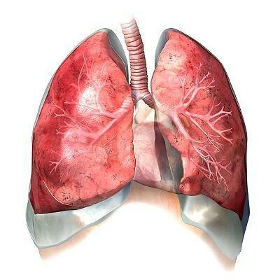 пневмония без температуры 3