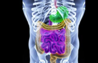 как проверить кишечник