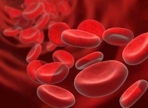 Профилактика анемии заключается в правильном питании