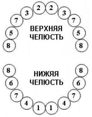 Последовательность прорезывания зубов у детей разная