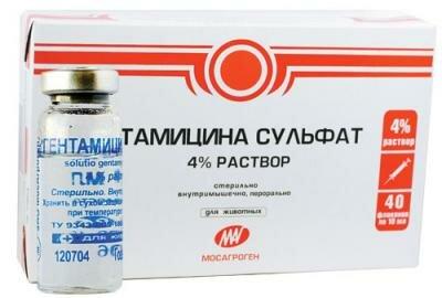 Антибиотик Гентамицина сульфат для лечения воспалительных процессов