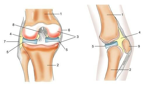 Упражнения при грыже шейного отдела позвоночника после операции